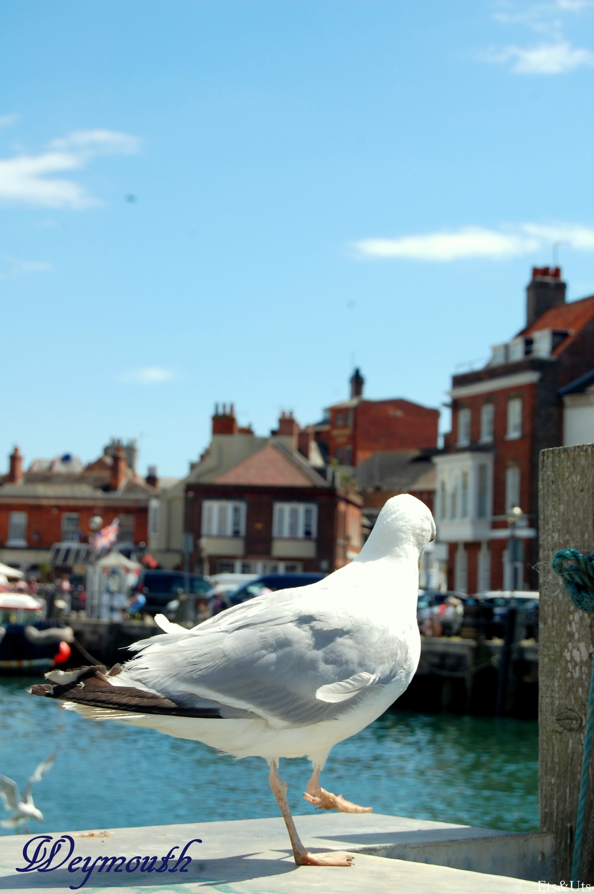 Blog_Weymouth2