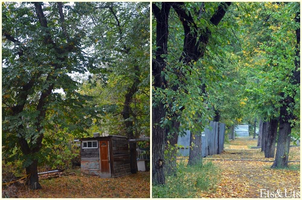 Una calle cualquiera de Almaty en Otoño