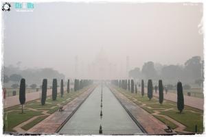 Niebla2